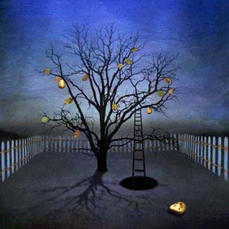 MT-night_garden2000.jpg
